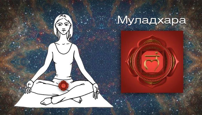 Первая чакра - Коренная чакра - Муладхара