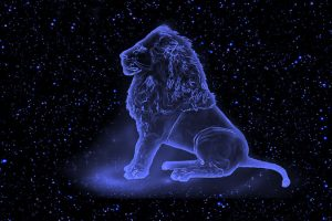 Лев (С 23 июля по 22 августа)