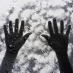 Форма и значение пальцев