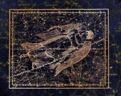Рекомендации для Девы в астрологии
