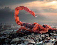 Астрология: сезон скорпиона на 2018 год