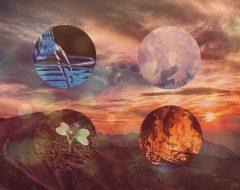 Астрология четырех стихий: 2019 год для знаков Воды, Земли, Огня и Воздуха