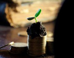 Советы Фэн-Шуй для богатства и бизнеса
