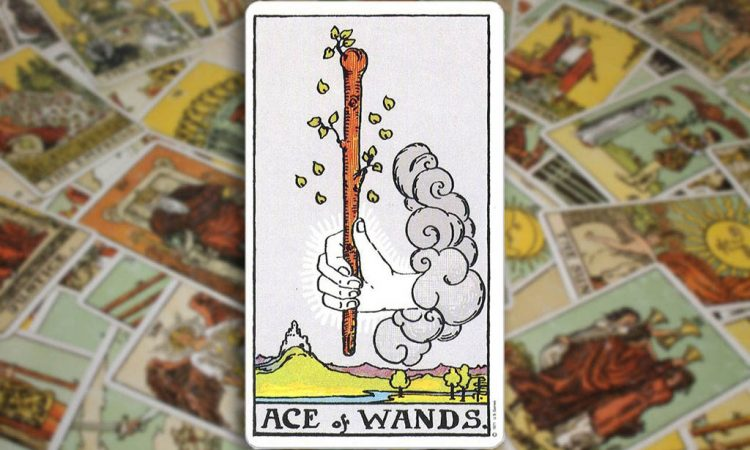 Ace of Wands - Туз Жезлов